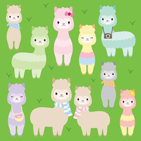 llama: illustration of cute alpacas or llamas in different colors.