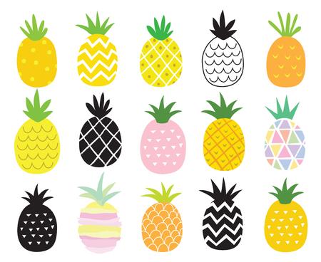 Vector illustratie set van ananas in verschillende stijlen.