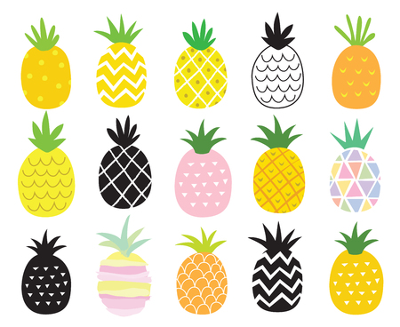 Vector illustration set of pineapple in different styles. Ilustrace