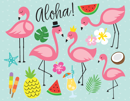 Cute flamingo with tropical summer vector illustration. Graphic elements such as pineapple, watermelon, hibiscus, coconut, pina colada, etc.