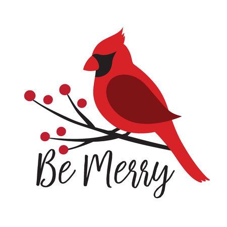 Red Cardinal bird on a winterberry branch vector illustration. Christmas Winter bird on a tree graphic. Illustration