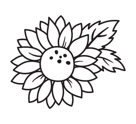 Outlined Black and White Sunflower with Leaves Vector Illustration.