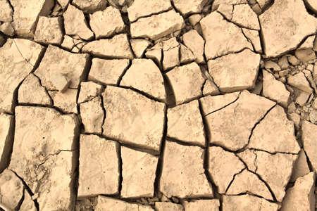 segregate: Cracked soil