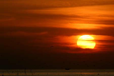 multi story: Sunset story