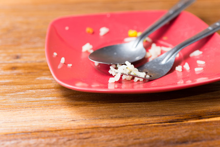 leftover: Empty plate left after eating, leftover food