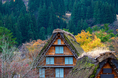 gassho-zukuri house in Shirakawa-go autumn. Shirakawa-go is one of Japan's UNESCO World Heritage Sites located in Gifu Prefecture, Japan. Editorial