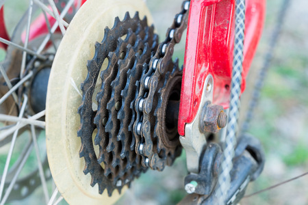 freewheel: Bicycle gears cassette and chain on mountain bike Stock Photo