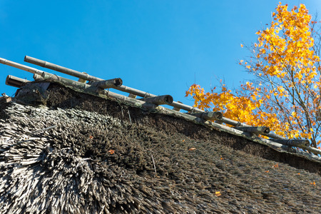 gassho-zukuri house Shirakawa-go in autumn. Shirakawa-go is one of Japans UNESCO World Heritage Sites located in Gifu Prefecture, Japan