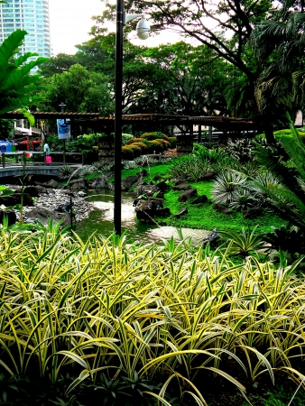 Greenbelt park in ayala makati city philippines asia Stock Photo - 24570112
