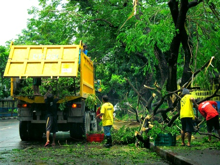 aftermath: Aftermath of typhoon glenda rammasum-international name in philippines last july 16, 2014