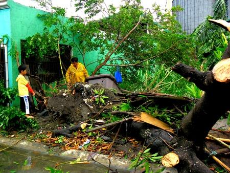Aftermath of typhoon glenda rammasum-international name in philippines last july 16, 2014