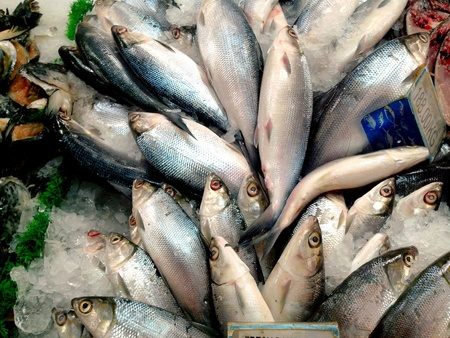 Fresh raw milk fish or bangus in filipino sold at a grocery Stok Fotoğraf
