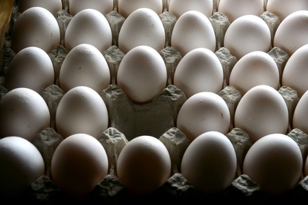 egg carton: Single missing egg from an egg carton or egg tray Stock Photo