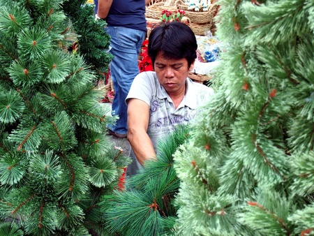 man: Man prepares christmas trees in a Store selling home decors in dapitan arcade in manila philippines