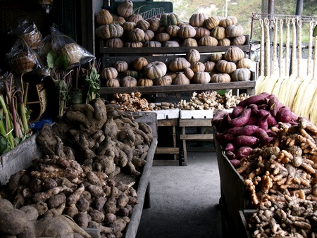 hiway: Vegetable and root crops store