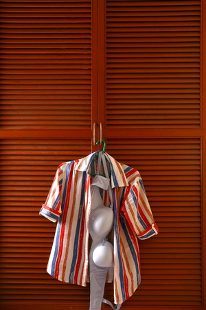 slacks: Blouse and bra hanging by a clothes cabinet door Stock Photo