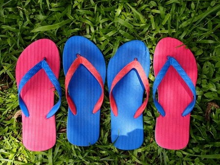 Colorful rubber slippers or flip flops on fresh green grass