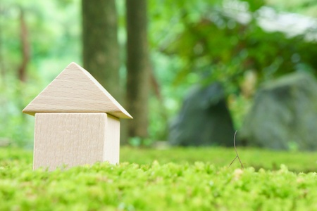 toy house on moss Stock Photo - 10644671