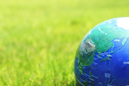 grass on earth photo