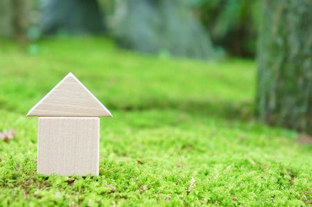 toy house on moss Stock Photo - 10792763