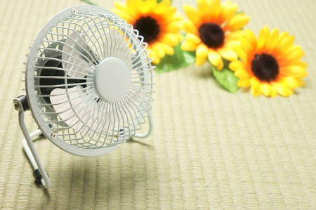 fan and sunflower on tatami Stock Photo - 13291907