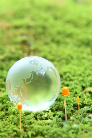 moss and globe Stock Photo