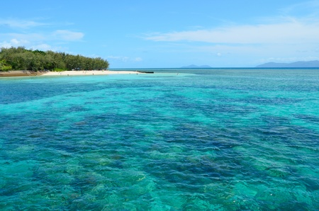 great barrier reef: Green Island, Queensland, Australia