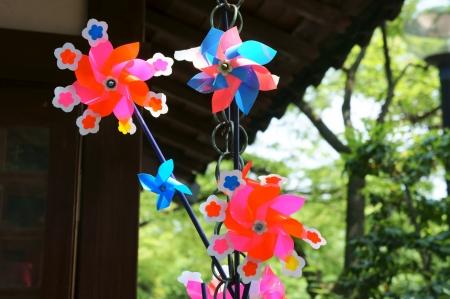 Colorful toy pinwheel Stock Photo - 13618102