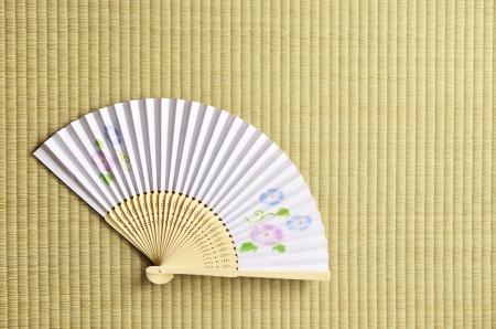 japanese fan  sensu photo