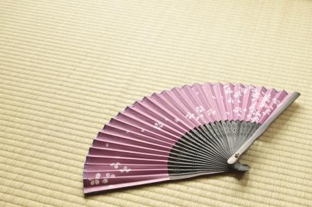 Japanischer Fan sensu Lizenzfreie Bilder
