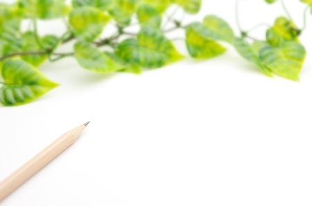 pen and plant Stock Photo
