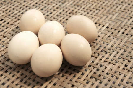 egg Stock Photo - 16947507