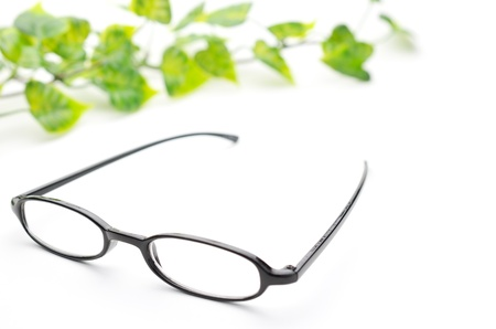Eyeglasses and the green leaf  photo