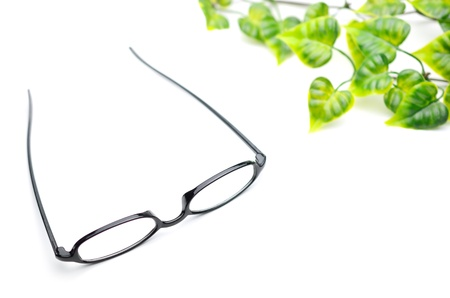 Eyeglasses and the green leaf  Stock Photo