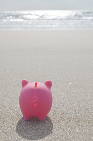 sand dollar: piggy bank on beach Stock Photo