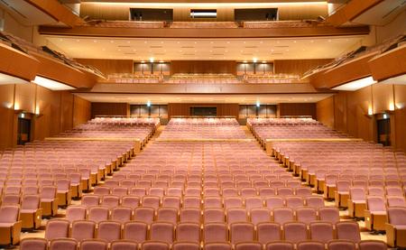 Luxury Theater seats