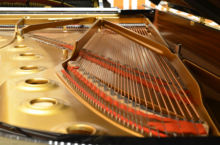 beautiful inside of the grand piano