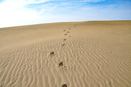 dunes: alone footprints of sand dunes