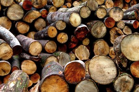 logging truck: Fire Wood - logs - heating season Stock Photo