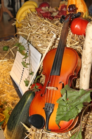 Violin and Vegetables as Thanksgiving Day Decoration  photo
