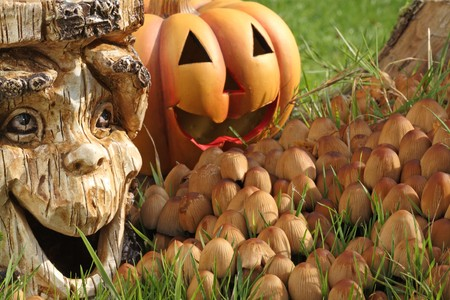 Halloween dekoration with pumpkin and tree stump. photo