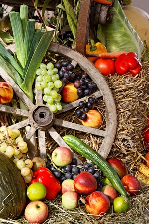 Fruits and Vegetables as Thanksgiving Day Decoration.