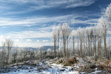 Winter countryside with snow and trees and St. Hostyn on the background