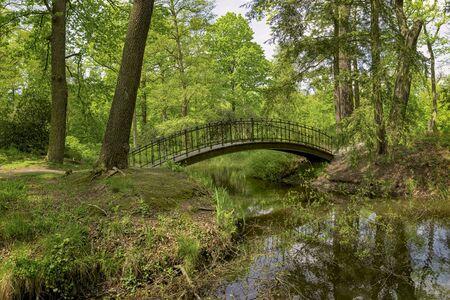 Bridge over river in the green park