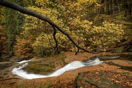 Mumlava river with water stream, Harrachov, Krkonose