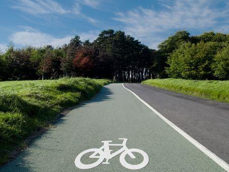Scenic fietspad in Phoenix Park in Dublin