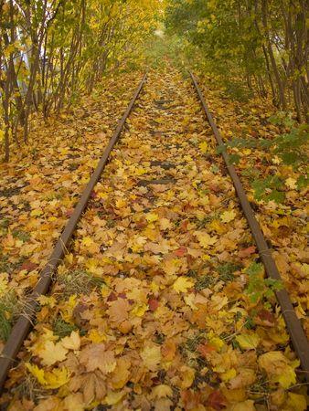 Railway in autumn photo