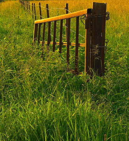 Old metal gate on the farm with light of sunset