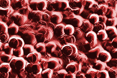 Blood cells virus cancer abstract photo