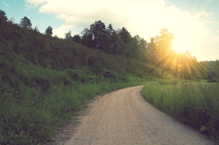 Vintage muddy trace on the forest road in the summer photo